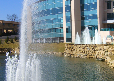 Fountains provide balance and movement to the water feature.